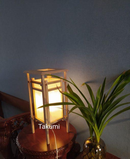 Đèn trang trí (2)