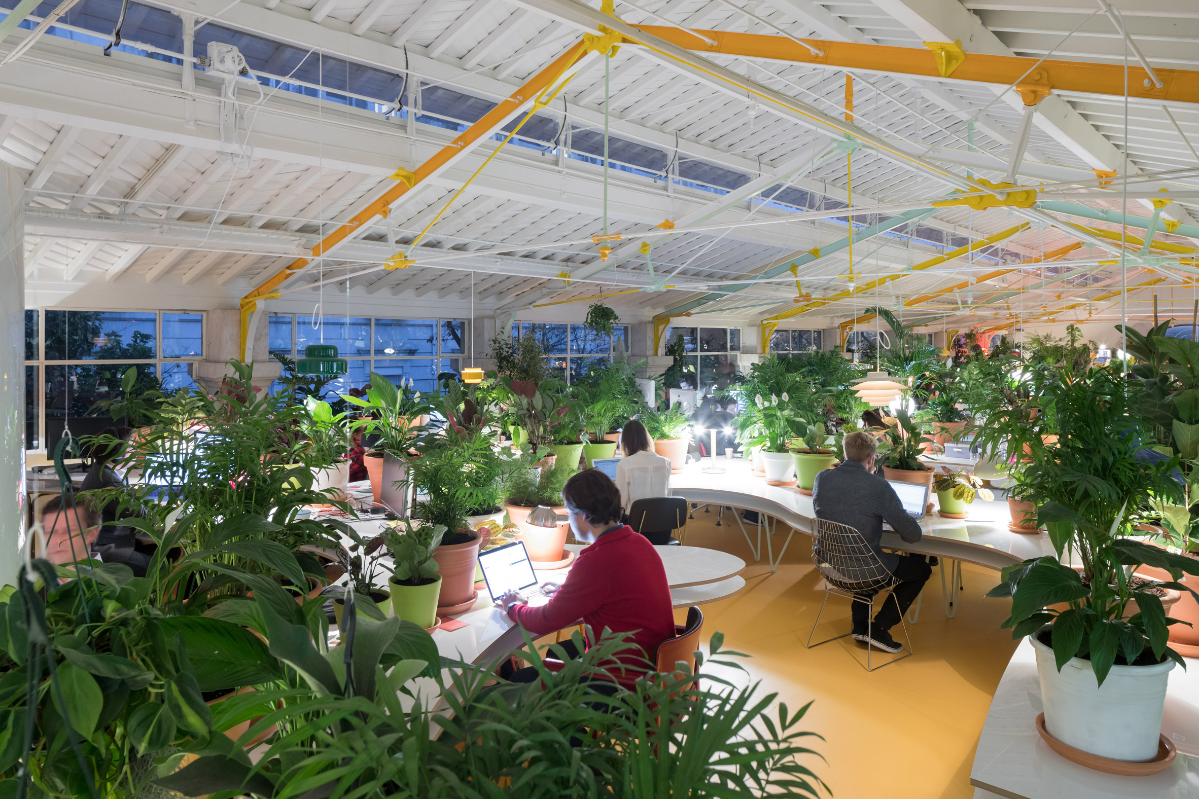 Văn phòng phong cách eco xanh mát